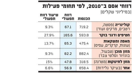 רווחי אסם ב 2010 לפי תחומי פעילות